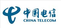 五色合作伙伴-中国电信